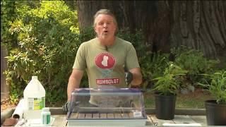 Gambar cover Cannabis Cloning 101: Kevin Jodrey / Green Flower Cannabis Cultivation Program