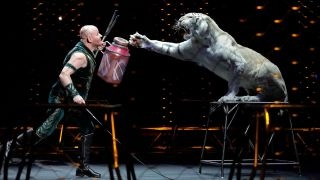 Ringling Brothers Circus to perform final show