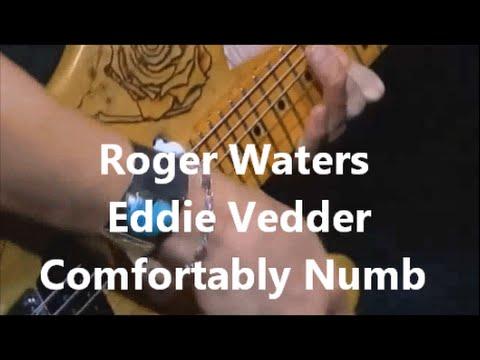 Comfortably Numb: Roger Waters - Eddie Vedder