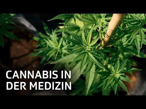 Der Cannabis-Apotheker