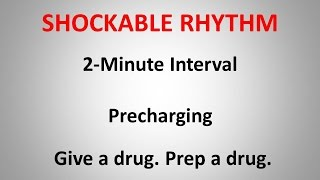 ACLS Shockable Rhythm Protocol   3 concepts