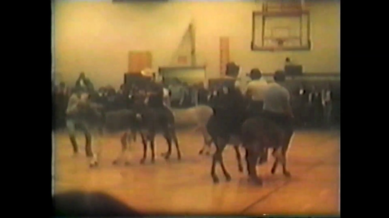 B. V. Home Movies - NCCS Donkey Basketball