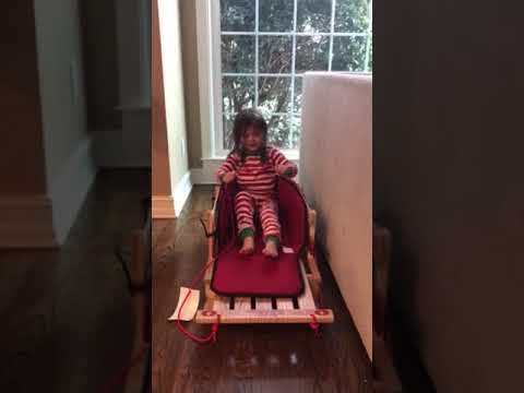 Avery driving the sleigh