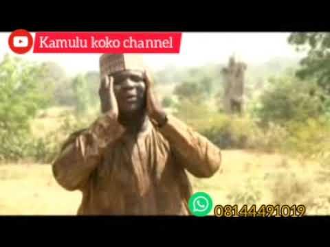Download Kamilu koko