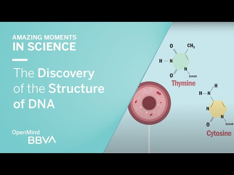 The Discovery of the Structure of DNA