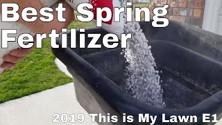 Ginja's spring lawn care fertilization.  2019 Spring lawn care step 1 This is My Lawn
