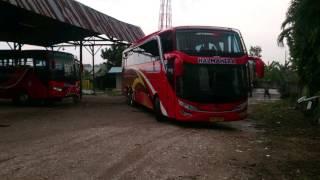 jalan jalan sore bersama Scania K410 dan K360 New Halmahera..