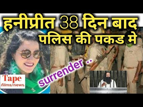 honeypreet arrested || current news update || daily news update || latest news today || hindi news