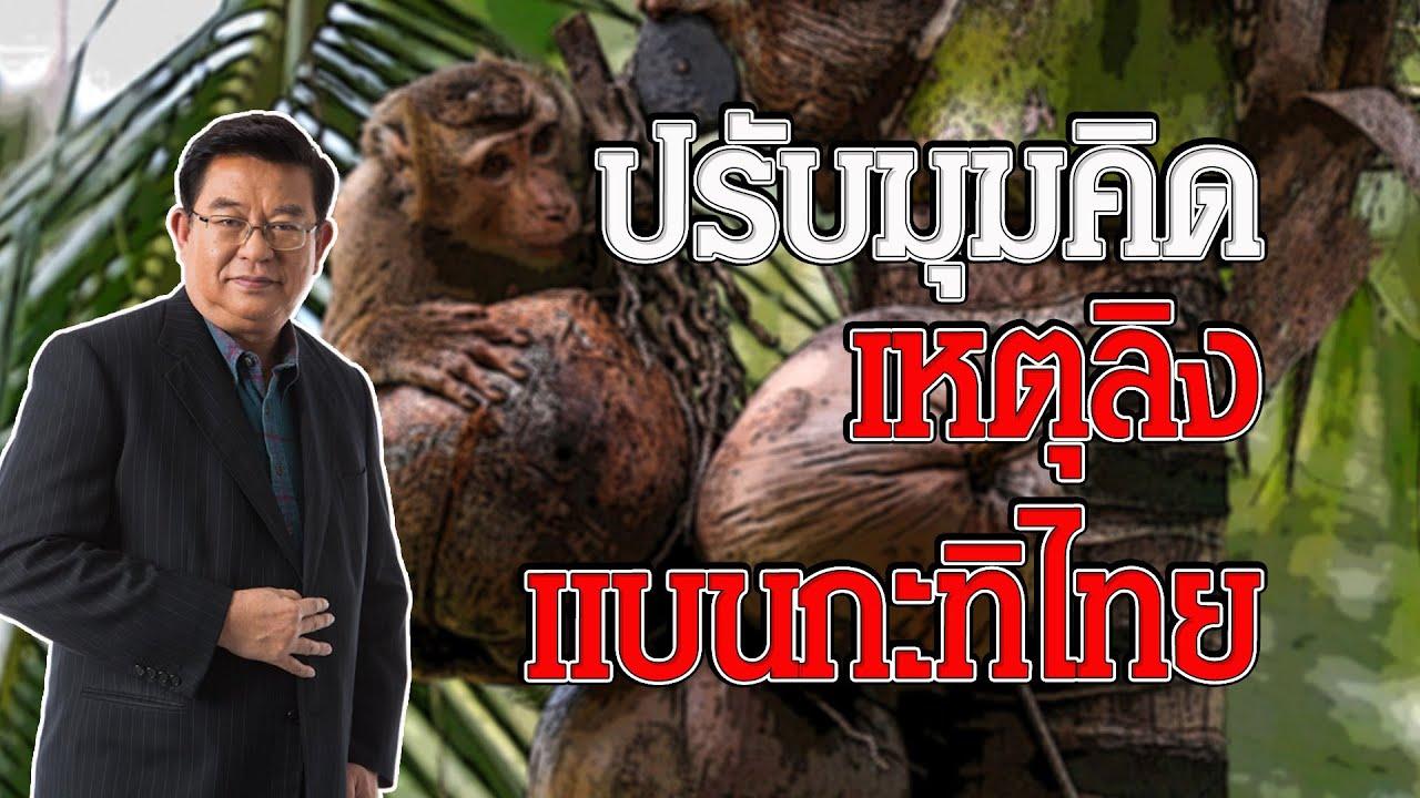มองมุมใหม่ เหตุลิงเก็บมะพร้าว แบนกะทิไทย
