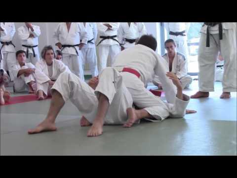 stage regional arbitrage partie jujitsu