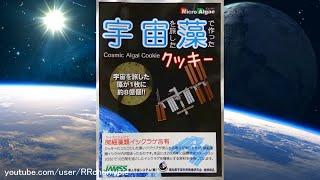 Space Food 5 - Cosmic Algal Cookie, Candy