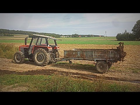 4 Ciągniki w Akcji ! (Ursus,Zetor,Fendt,NH ) Vlog#194 Obornik oraz Woda na Pole ! :D
