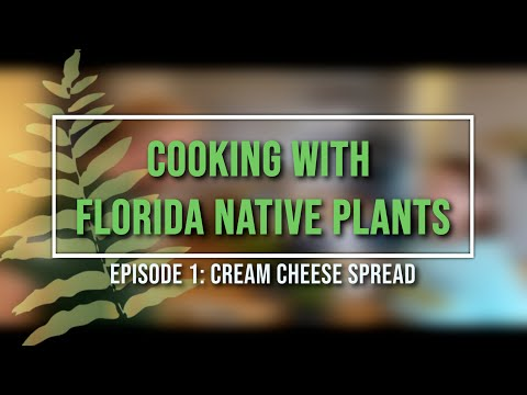 Cooking with Florida Native Plants: Episode 1