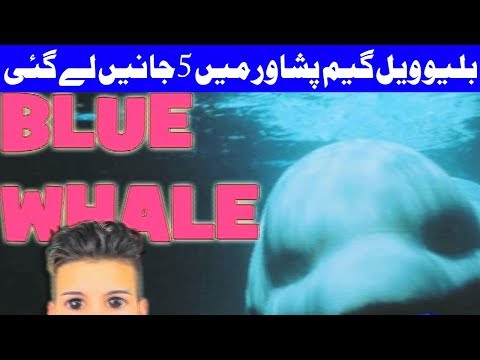 Blue Wheel Game Suicide Attempt In Pakistan - Headlines and Bulletin - 09:00 PM - 14 September 2017