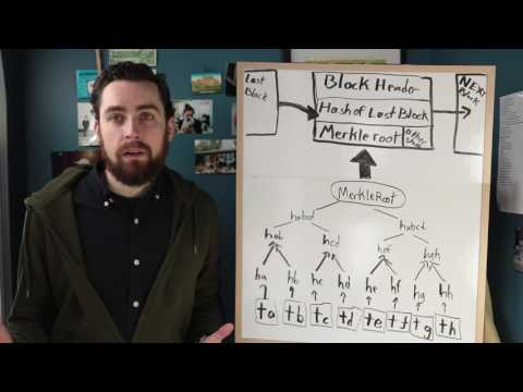 What Is The Merkle Tree In Bitcoin?