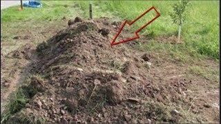 Dựng tóc gáy với tiếng rên trong mộ hoang, đào lên thì...phát hiện...