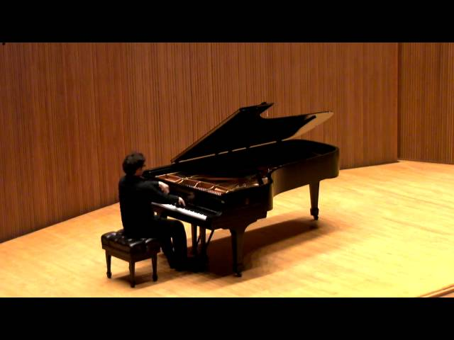 Schubert sonata D958 in C minor