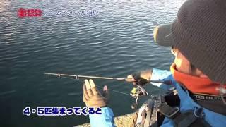 Repeat youtube video メバル釣り【ワーム釣り入門】釣り方のコツ