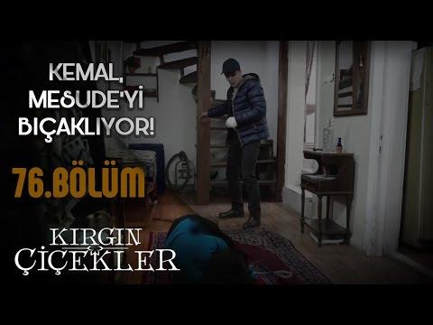 Kırgın Çiçekler 76. Bölüm - Kemal, Mesude'yi bıçaklıyor!