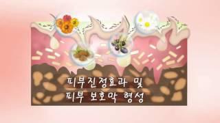 [로고나] 프리미엄베이비 효능