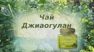Чай травяной Джиаогулан компании Три Д Гармония