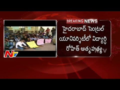 Hyderabad Central University Student Rohit Suicide || NTV