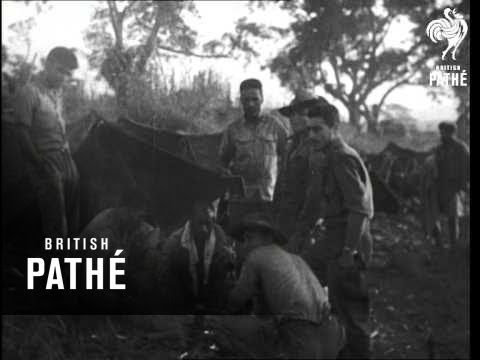 Indochina - Latest News (1950)