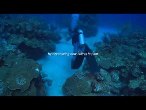 Ocean Tech Marine Research Project, July 2016