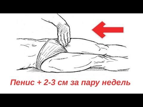 """Увеличение полового члена на 2-3 см """"Лошадиные сдавливания"""""""