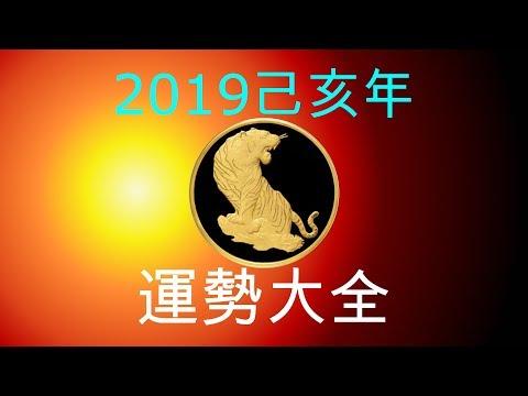 2019年己亥年運勢大合集:肖虎者