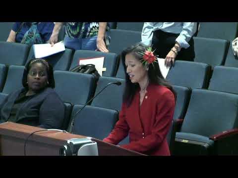 FCPS School Board Public Hearing Budget 5/15/18