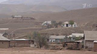15 боевиков ИГИЛ уничтожены на таджикско-узбекской границе.