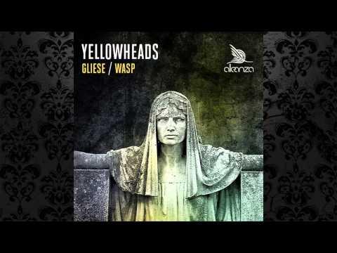 The YellowHeads - WASP (Original Mix) [ALLEANZA]