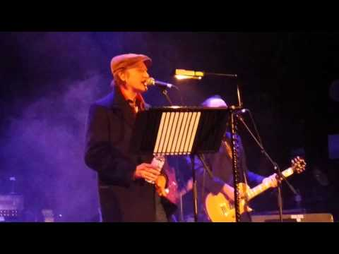 Ray and Dave Davies - you really got me  (12.2015)