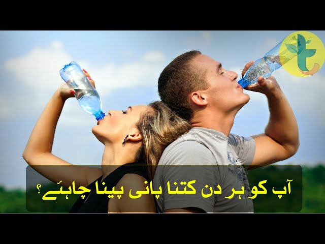 How Much Water Should You Drink Every Day? Daily Water intake for Men & Women Tabib.pk