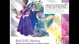 Bird O10C - Raindrop (Andre Sobota Remix) - Mesmeric Records