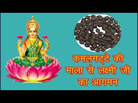 कमलगट्टे की माला से करें माता महालक्ष्मी को प्रसन्न || धन प्राप्ति का प्राचीन उपाय thumbnail