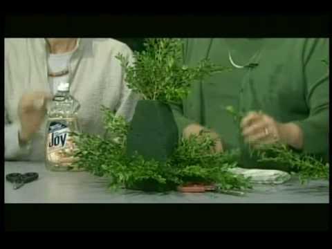 TheGreenConnectionVT.com: Holiday Boxwood Tree - YouTube