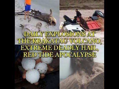 DAILY EXPLOSIONS AT THE KRAKATAU VOLCANO, EXTREME DEADLY HAIL, RED TIDE APOCALYPSE