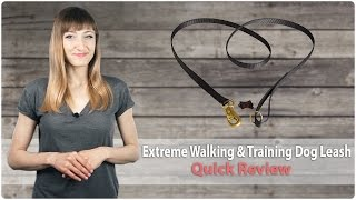 Extreme Walking And Training Nylon Dog Leash - Quick Review
