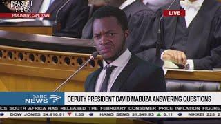 Deputy President David Mabuza loses his cool in Parliament