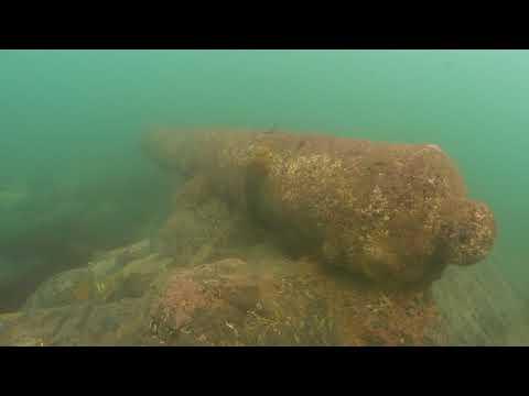 Schiedam Dive 3rd November 2017