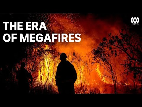 Extreme Wildfires | How megafires are reshaping forests
