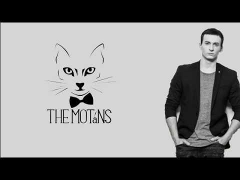 The Motans - Mr. Tort | (Lyrics)