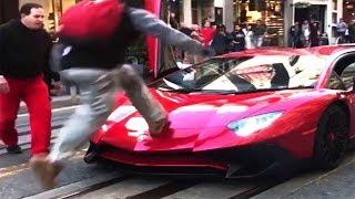 Il n'aurait jamais dû sauter sur la Lamborghini... ⚆ _ ⚆