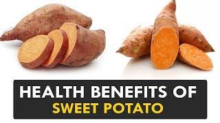 Health Benefits of Sweet Potato - Health Tips || Health Sutra