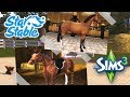 Trying to Create My Star Stable Horses in The Sims 3! 🐴