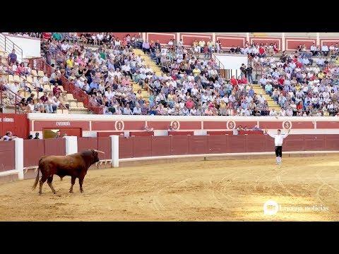 VÍDEO: Algunas imágenes del paseo de caballos y espectáculo de recortadores en el Coso de los Donceles