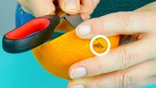 Mit diesem Orangen-Trick sieht jeder Garten im Winter peppig aus