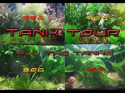 PPA Tank tour